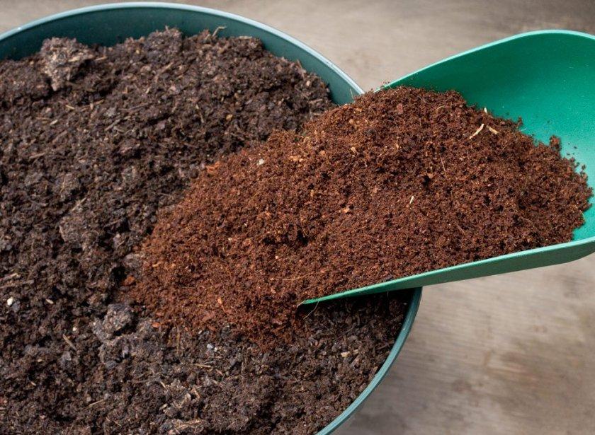 Почвосмесь для рассады капусты