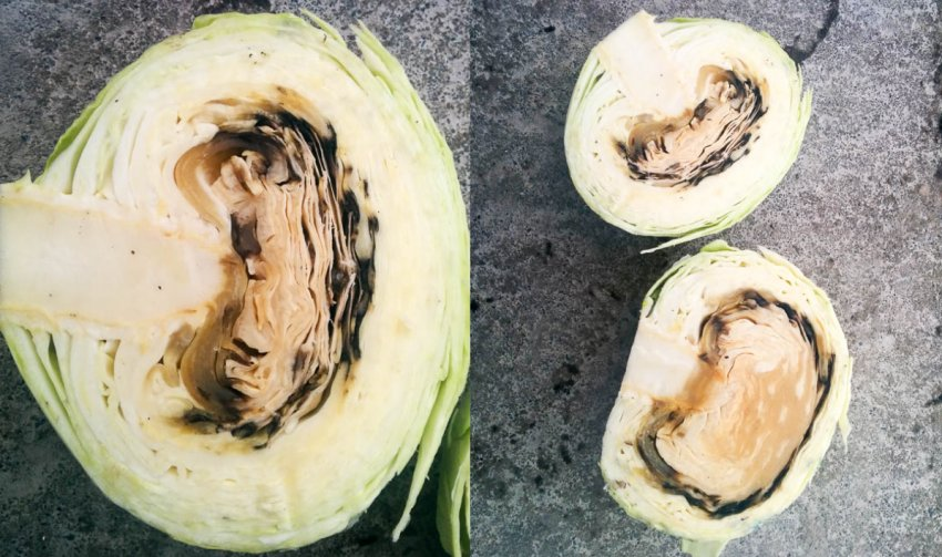 Почернение капусты