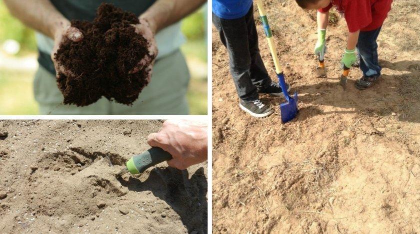 Удобрение почвы торфом и песком