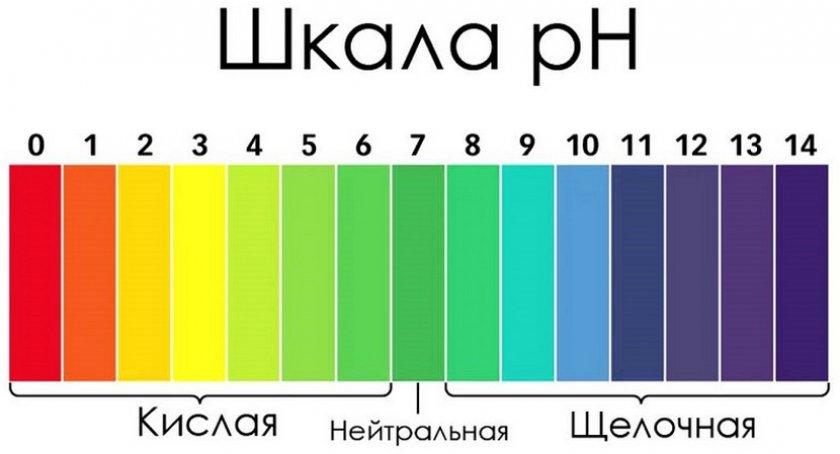 Шкала кислотности грунта