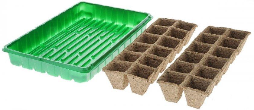 Рекомендуемая ёмкость для выращивания огуречной рассады