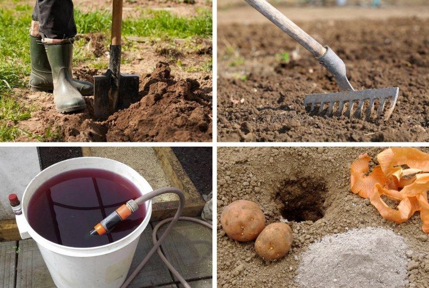 Подготовка участка с посадке картофеля