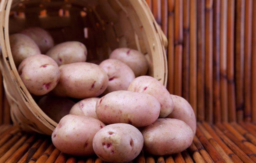 Картофель Хозяюшка