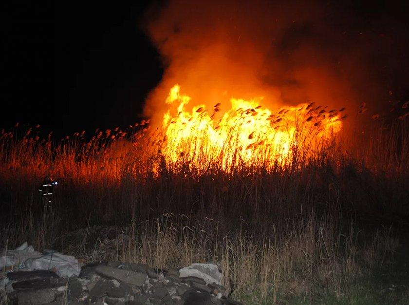 Престарелая супружеская пара из Житомирсокй области погибла из-за сжигания сухостоя