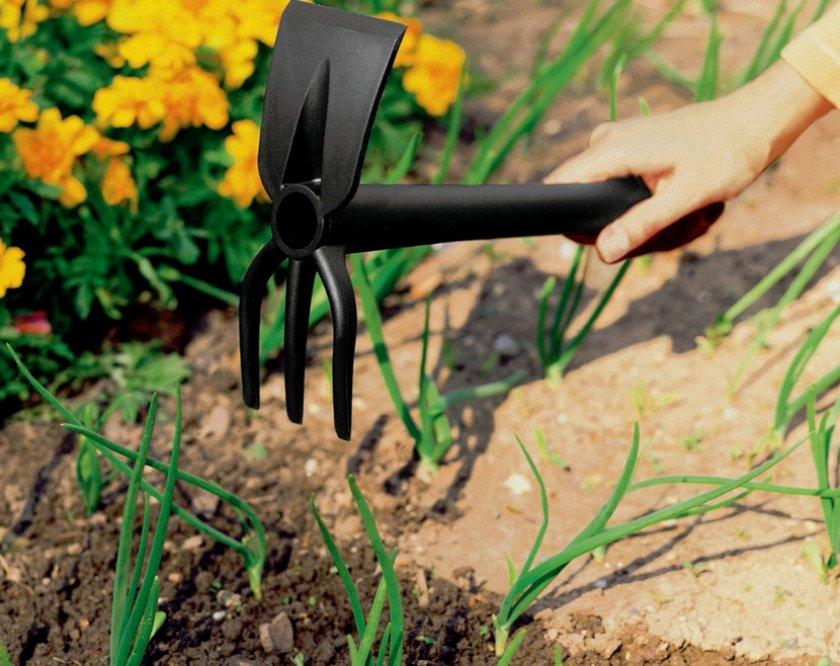 Рыхление почвы для лука