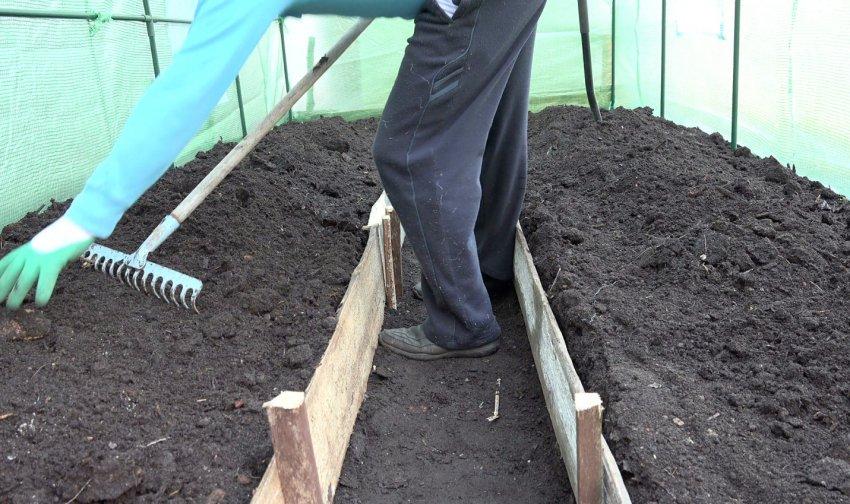 как подготовить землю для теплицы с нуля