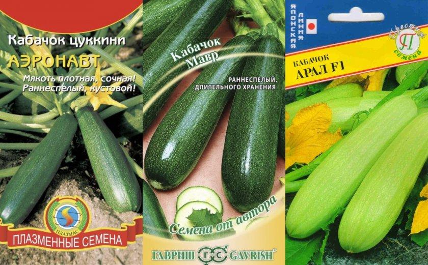 семена раннеспелых кабачков