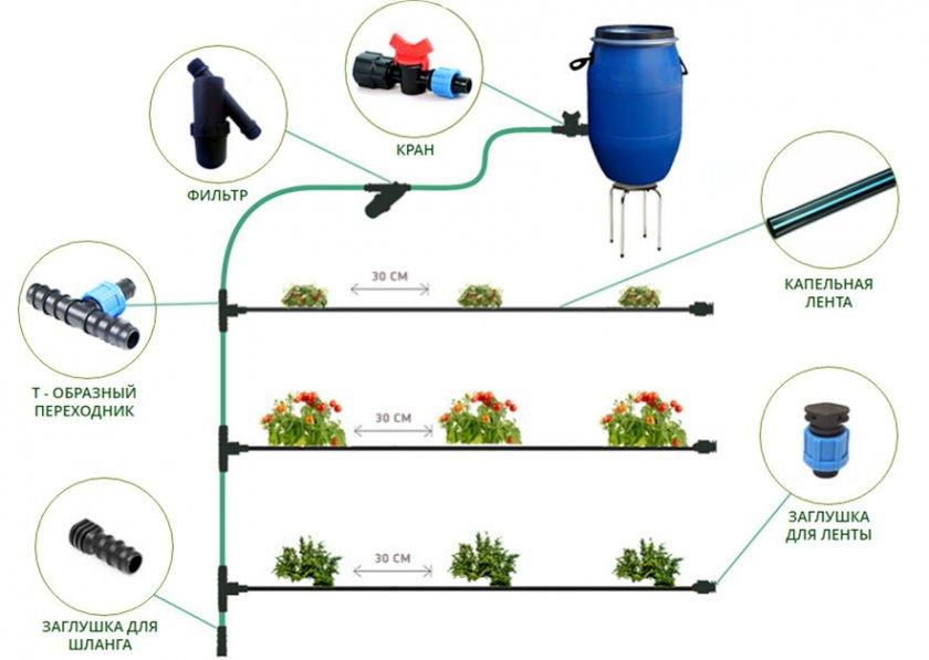 Поэтапное изготовление капельной системы полива
