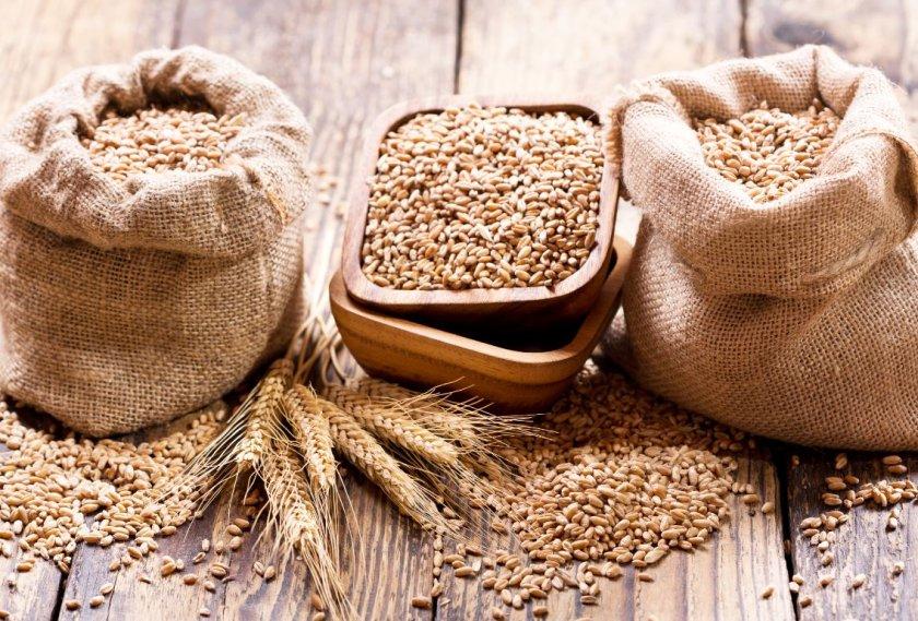 Украина уменьшила темпы экспорта пшеницы