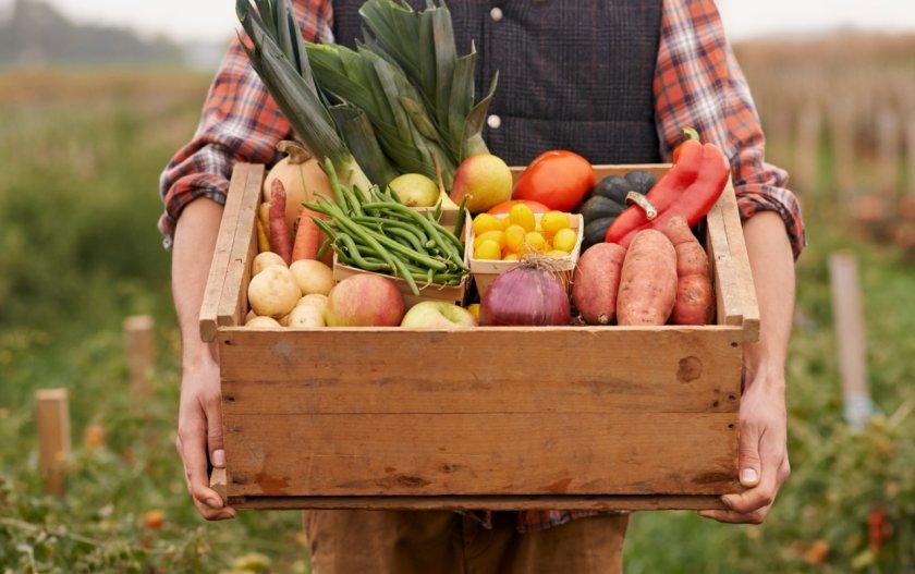 Ирландские фермеры теперь могут использовать глобальную платформу страхования урожая