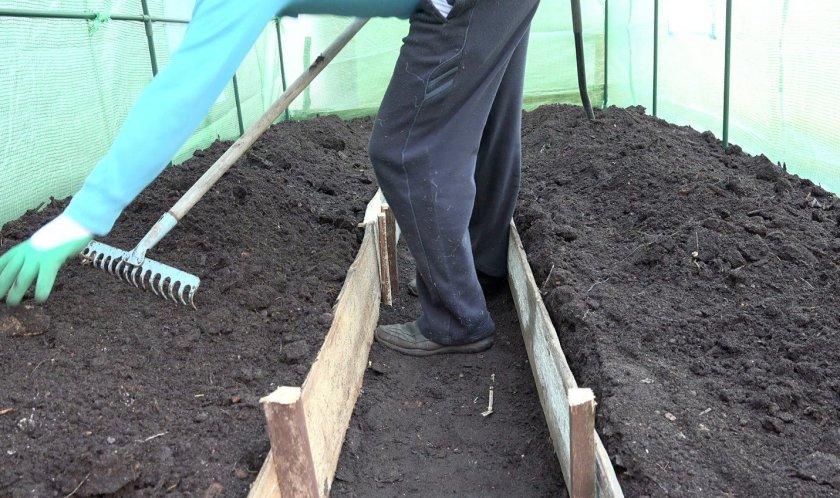 Почву перекапывают на штык