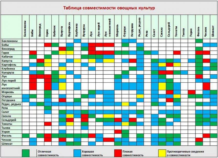 Таблица совместимости культур