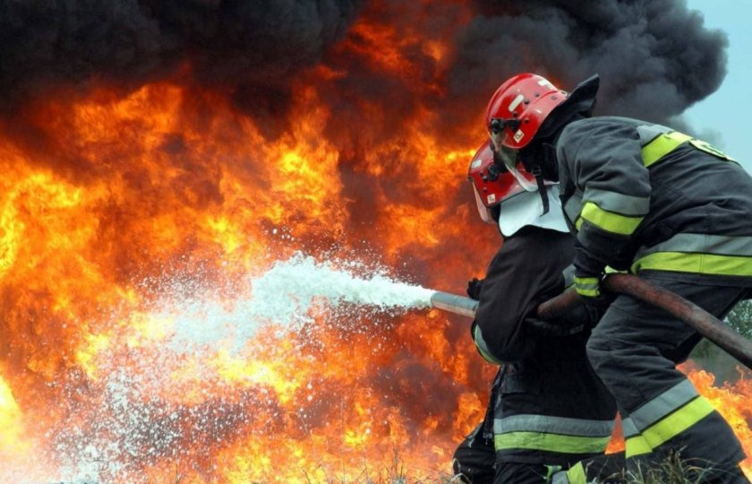 При пожаре во Львовской области погибли 500 сельскохозяйственных животных