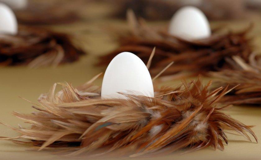 В Британии местное население против создания «мега-яйцефермы»