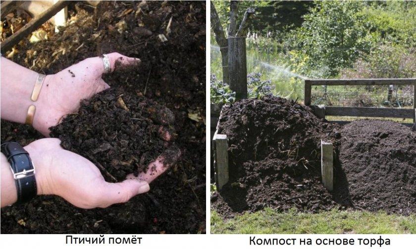 Органические удобрения для огурцов