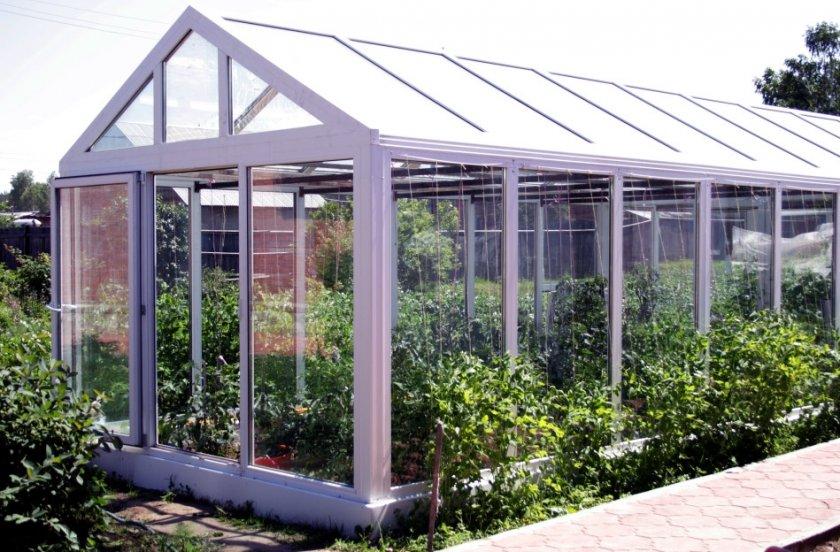 Выращивания картофеля в стеклянной теплице
