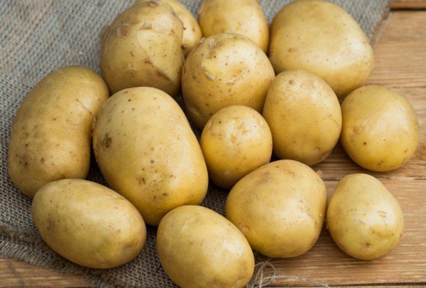 Картофель Искра