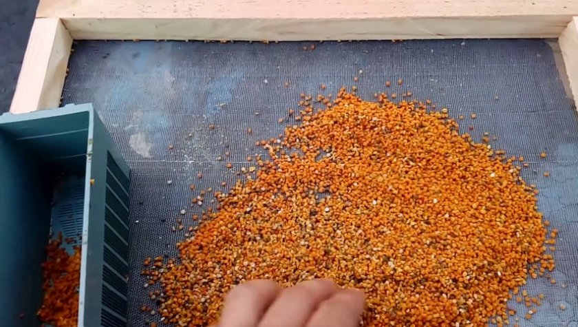 Сушка пчелиной пыльцы