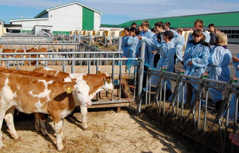 Марокко и французское агентство по развитию сельскохозяйственных планов подписали меморандум о взаимопонимании