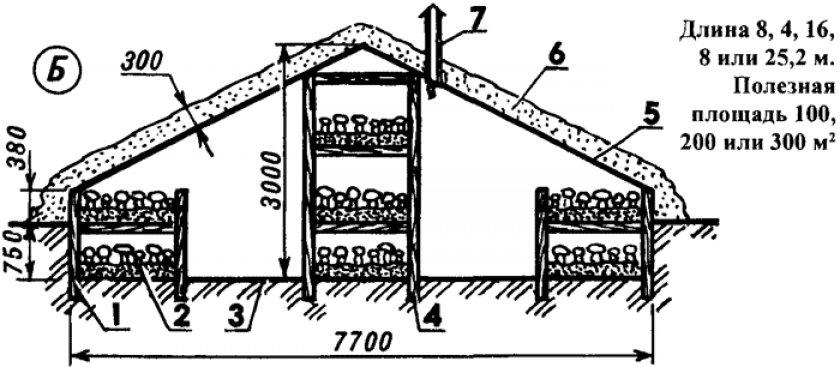 Схема специализированной теплицы для грибов