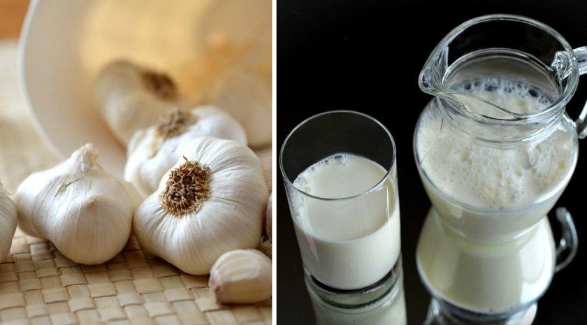 Молоко с луком и чесноком