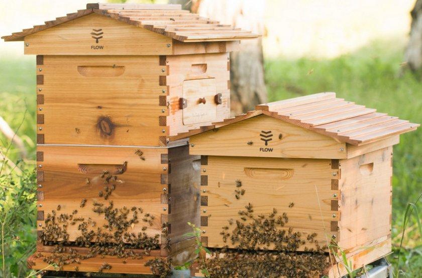 Домик для пчёл