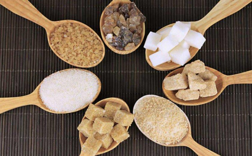 Шепетовский сахарный комбинат модернизирует производственные мощности к новому сезону