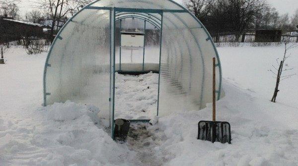 зачем нужен снег в теплице зимой