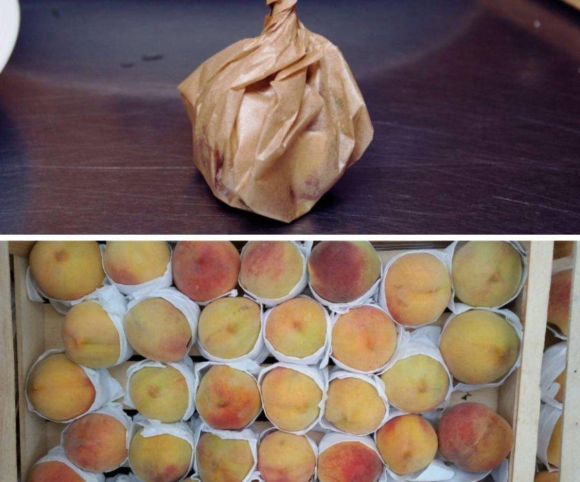 Хранение персика