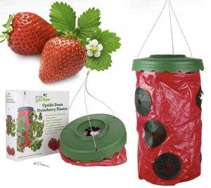 Мешок для выращивания клубники