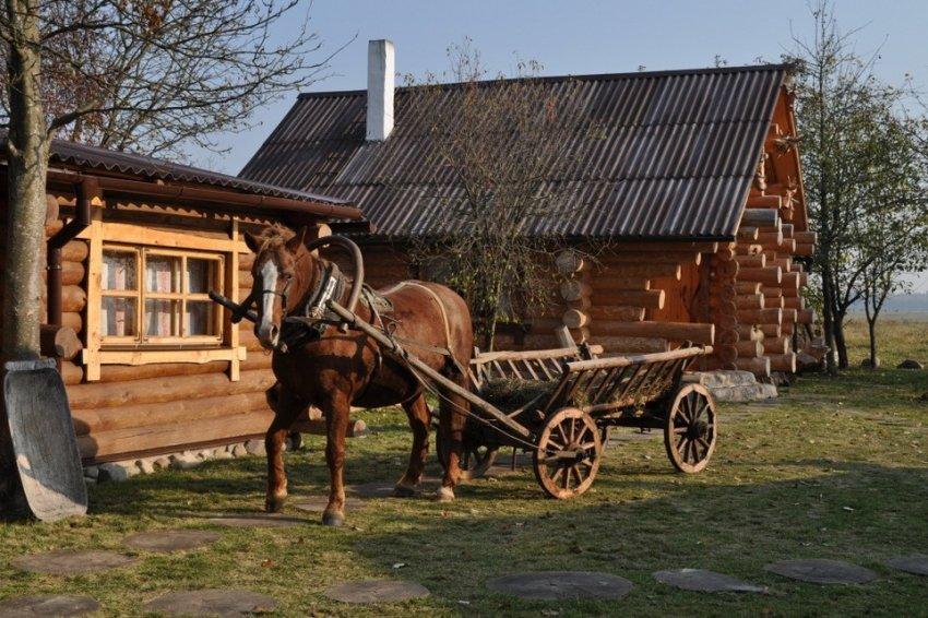 Телега для лошади
