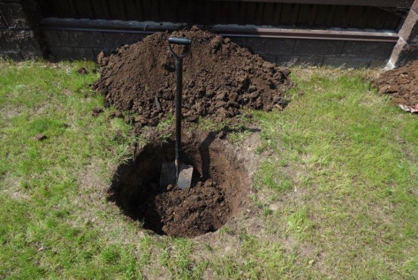 Подготовленная посадочная яма