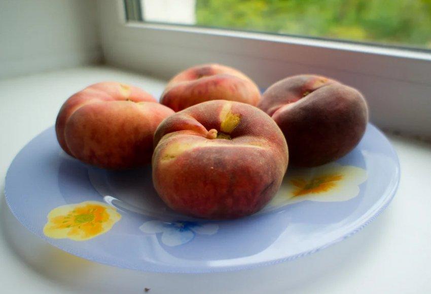 Хранение инжирного персика