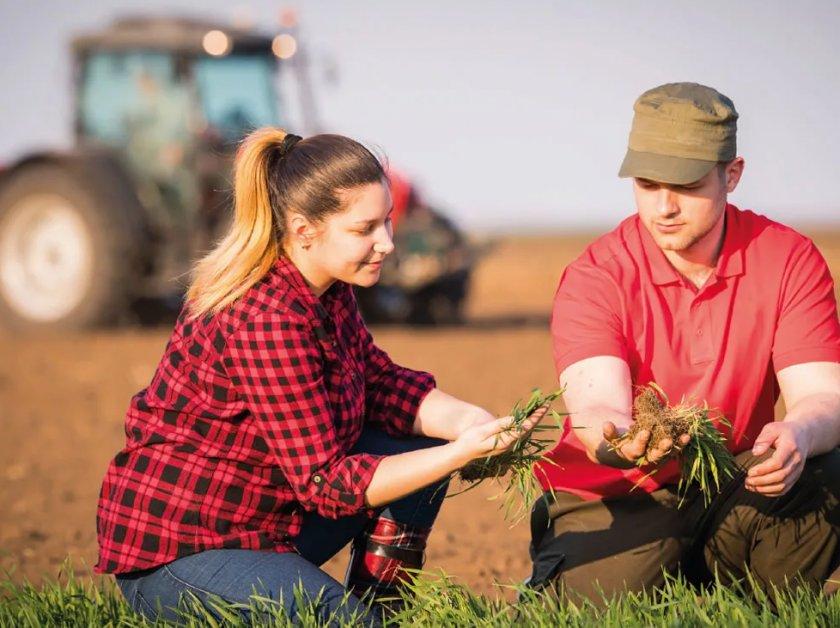 В Болгарии фермеры получили «зелёные платежи»