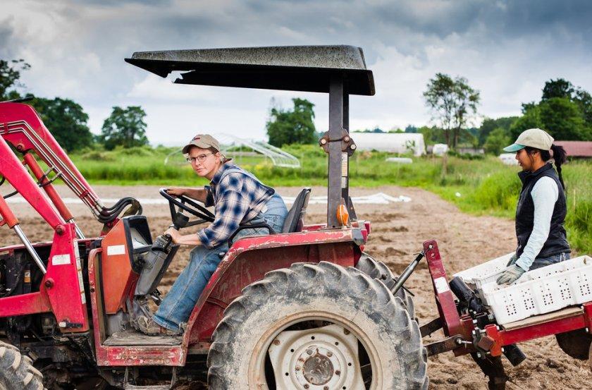 В Британии платёжное агентство задолжало фермеру очень круглую сумму
