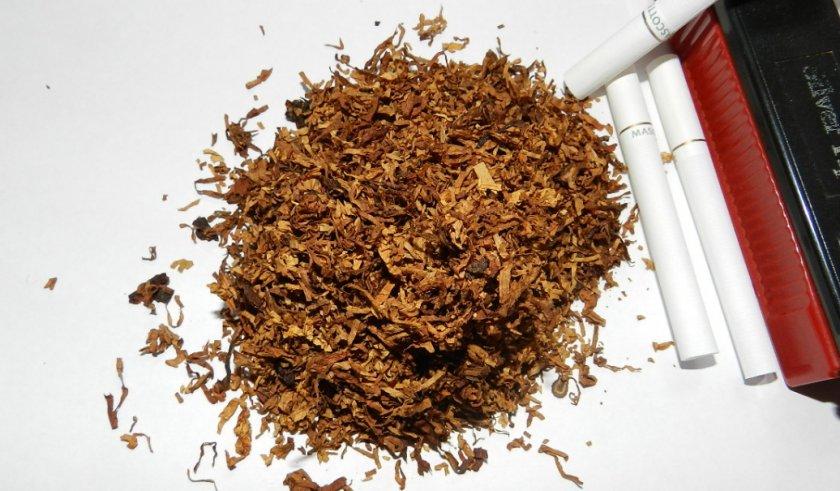 Табак после ферментации