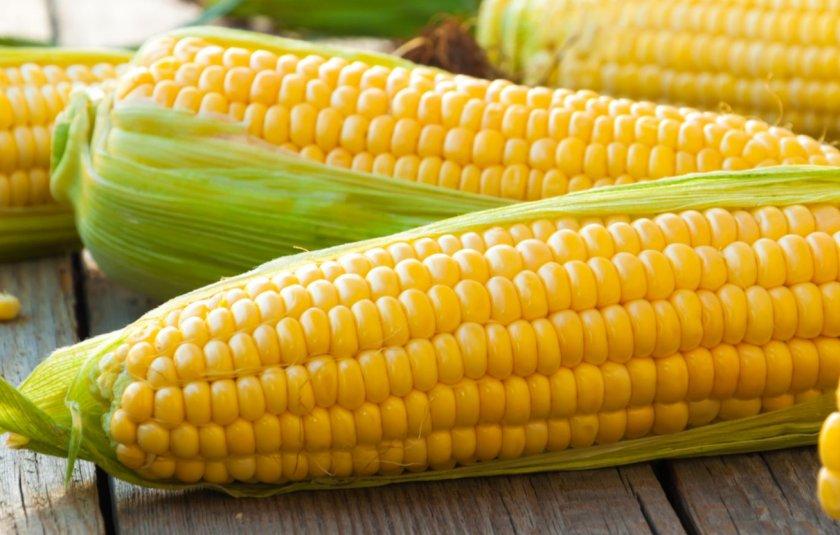 Карпатский изобретатель создал одноразовую посуду из кукурузных остатков