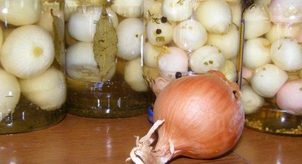 Как приготовить вкусный маринованный лук полукольцами на зиму