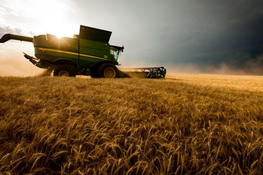 Ставропольские аграрии всерьёз обеспокоились повышением плодородия почв