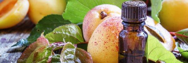 Абрикосовое масло для лица: применение от морщин, вокруг глаз