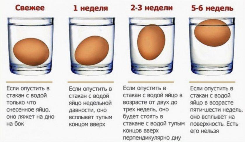 Определение свежести яиц