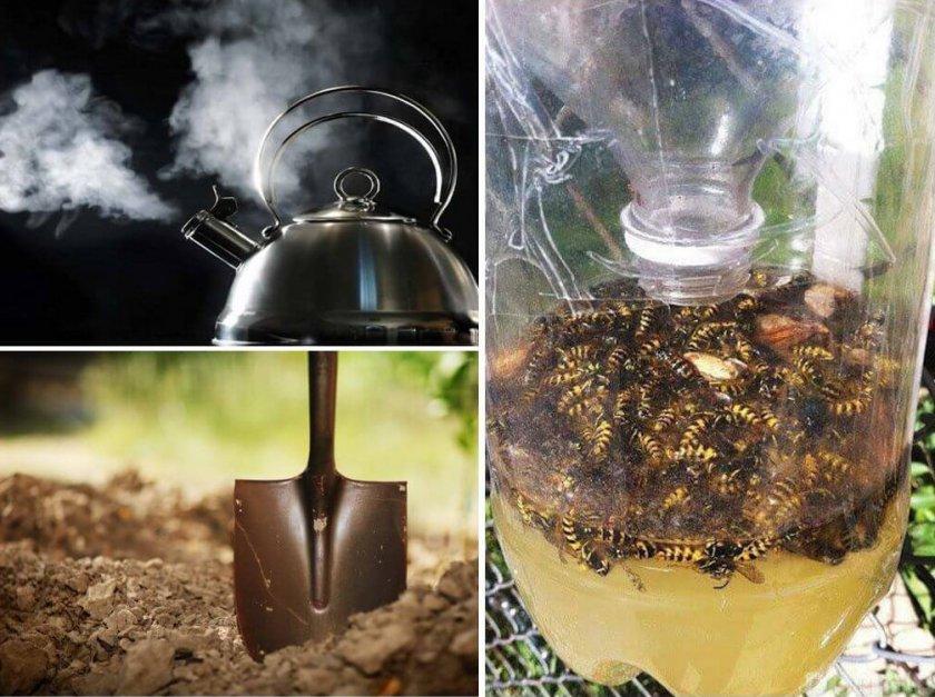 Способы борьбы с земляными пчёлами