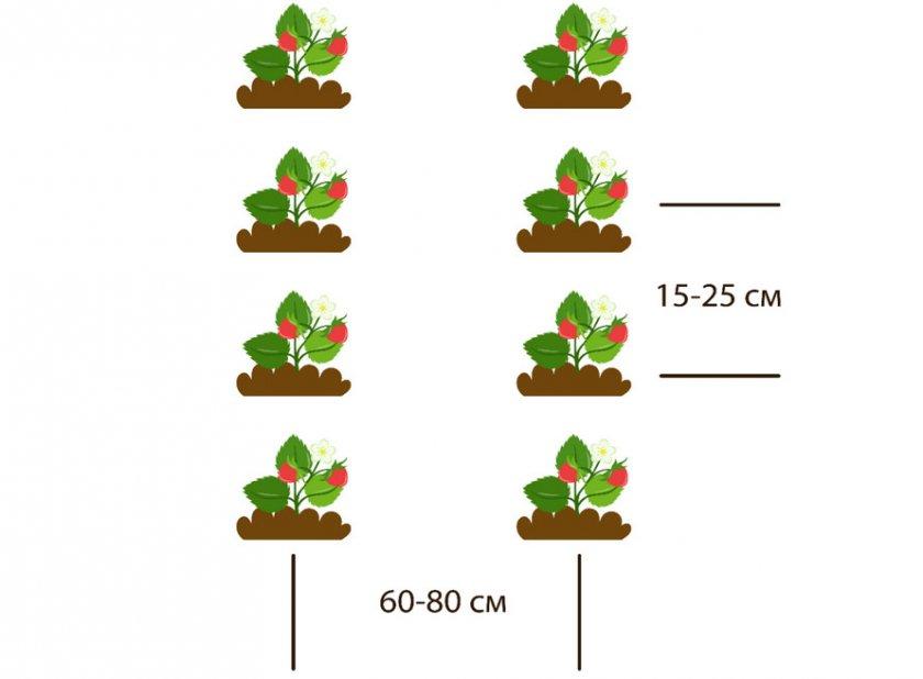 Рядовый метод посадки