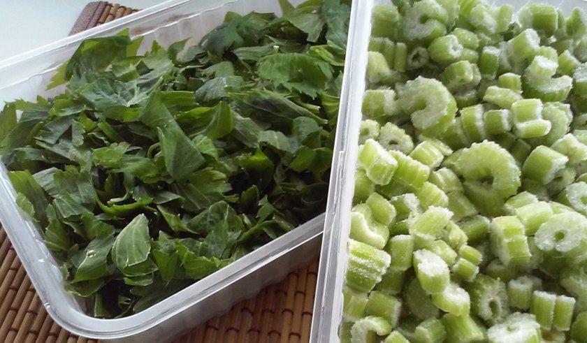 Как хранить сельдерей: как сохранить на зиму в холодильнике корень или черешковый