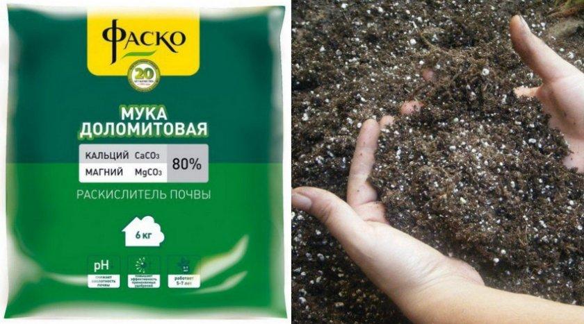 Доломитовая мука для раскисления почвы