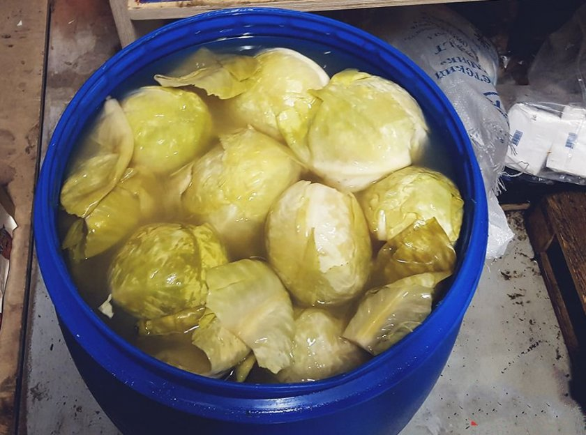 Как правильно квасить (засолить) капусту на зиму в ведре