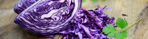 Что приготовить из краснокочанной капусты на зиму