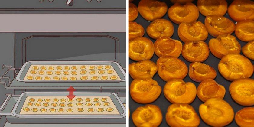 Сушка абрикосов в духовке