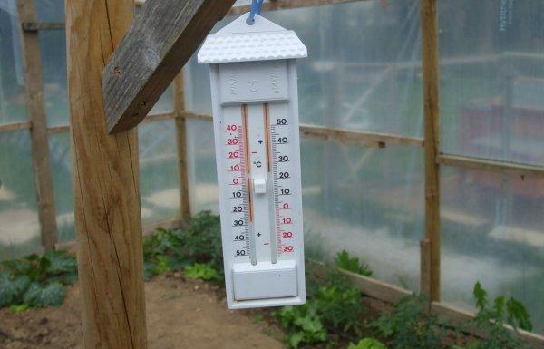 Температура в теплице из поликарбоната зимой
