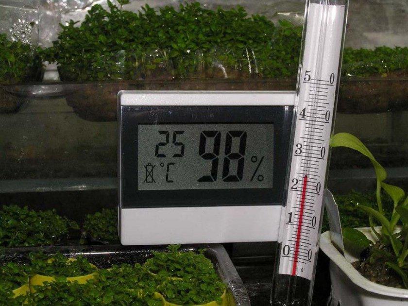 Температура почвы